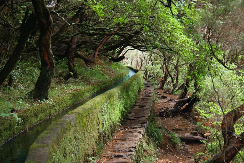 Levada bei Rabaçal, Madeira Bild: JOEXX CC BY-SA 3.0
